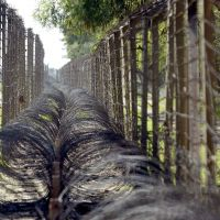 Fenced in: An Indian soldier (right) patrols a border area with Pakistan in the state of Jammu and Kashmir. New Delhi and Islamabad are accusing each other of violating a ceasefire in the region after a Pakistani soldier and two Indian troops were killed recently. | AP