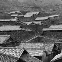 A view of tiled roofs in south Ehime (1950)  | YUKIO FUTAGAWA