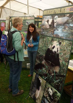 U.K. birders' fair shows we can all help save even LBJs