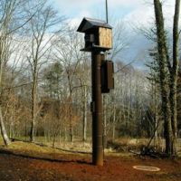 Watch tower: The steel post by a pond in our woods with the remote-controlled high-definition autofocus camera housed in a 'bird box' on the top. Live video from there is relayed to the nearby Afan Nature Center and to the offices of our sponsor company, Intage, in Nagano and Tokyo. Soon, however, footage could be going around the world. | C.W. NICOL PHOTO
