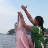 In the pink down on the Rio Negro