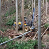 Woods sense: A mechanized harvester (above) and a forwarder (below) in a forest in Kyoto Prefecture managed by the Hiyoshi Forest Owners Cooperative. | ATSUSHI ISHII PHOTOS
