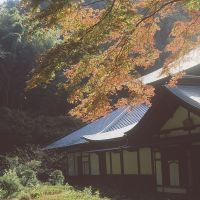 Seasonal splendors: Zuisen-ji Temple in autumn is a photographer's dream.