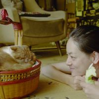 Woman's best friend: With its light and lingering story, gentle comic touch and great attention to visual detail, Naoko Ogigami's 'Rentaneko (Rent-a-Cat)' seems designed to appeal to a female audience.   © 2012 Rent-A-Cat F.P.