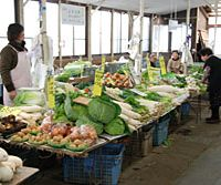 Freshly harvested vegetables at the produce market in Kamakura (top); the catch of the day at Kotsubo's fish market (above) | ROBBIE SWINNERTON PHOTOS