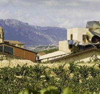 Rioja on the rise