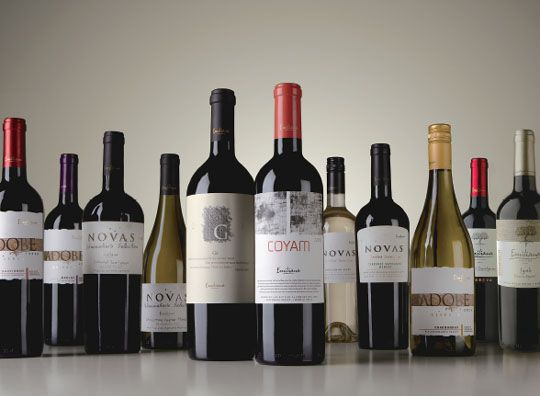 Quality is key at Chilean organic winery