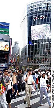 Is Shibuya bad for your health?