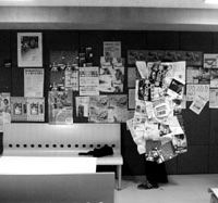 A member of Waseda University's Kakurembo Dousoukai club hides behind leaflets festooning a signboard in a corridor during an official hide-and-seek event in 2006.   PHOTO COURTESY OF SETOUCHI JACKSON