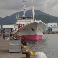 Dock of the bay: A 300-ton, deep-water pole-and-line katsuo (skipjack) fishing boat at Yaizu in Shizuoka Prefecture.