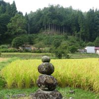 Mixed omens: An auspicious cairn amid small paddy fields around a village in the hills of Mie Prefecture. With Japan's rapidly aging population, and its youth's flight to the cities, the future for such labor-intensive agriculture is very uncertain.