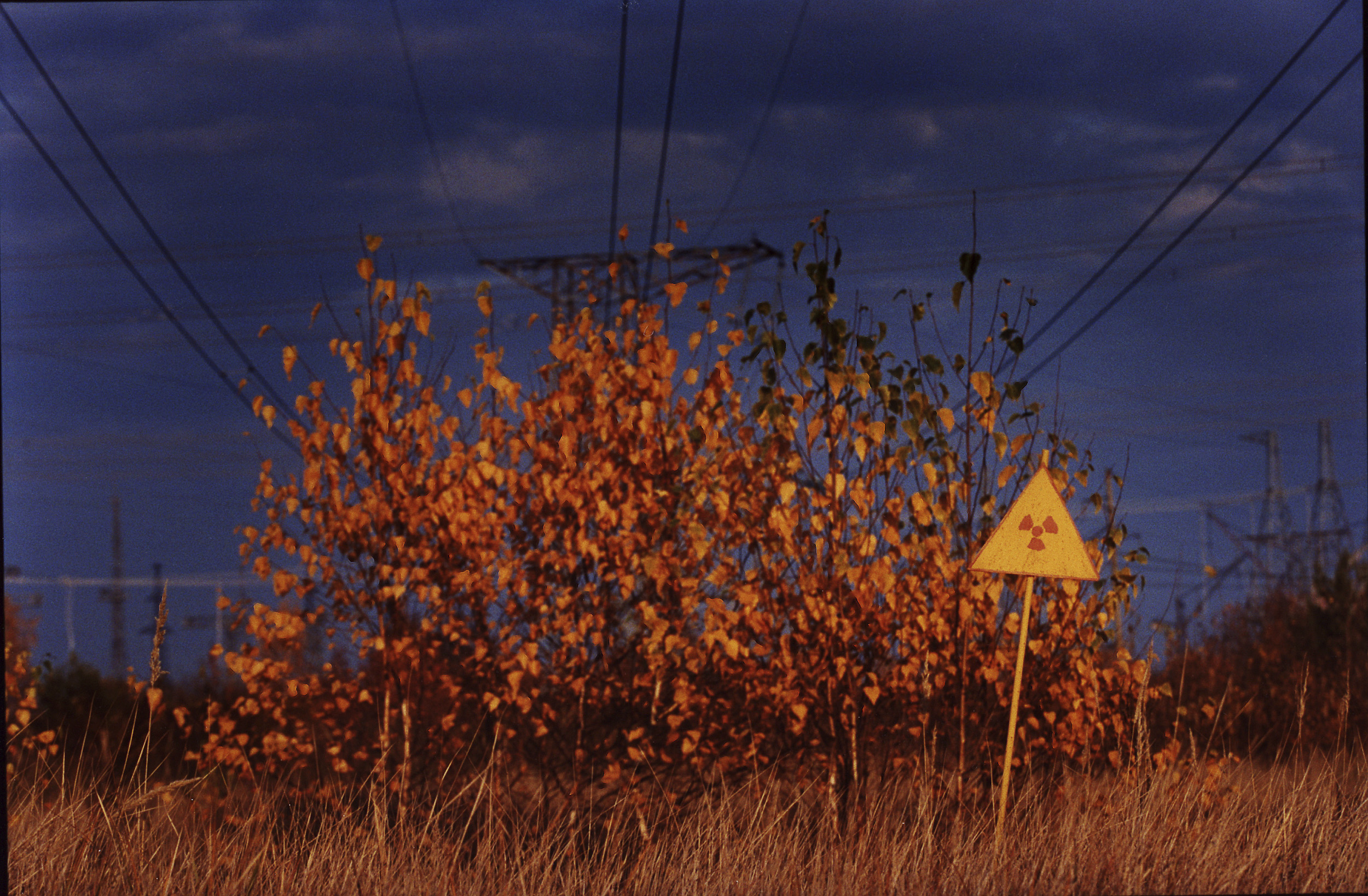 Radiant beauty: A warning sign 2 km west from the Chernobyl nuclear power plant warns the area is still contaminated. | JUN NAKASUJI PHOTOS