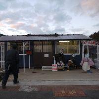 Sato's seed shop, which reopened in August 2011 on the same spot of his previous shop,only 2.5 km from the shore in Rikuzentakata, Iwate Prefecture.   TOMOKO OTAKE