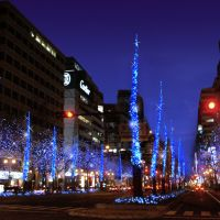 Osaka lights up for the holidays