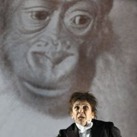 The ape-man cometh: Kathryn Hunter performs the role of Red Peter in the one-man play 'Kafka's Monkey.'