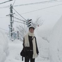 Walking through many parts of town was like navigating a warren with 2-meter-high white sides