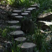 Stepping stones that form part of the 1.2-km path along the ravine.