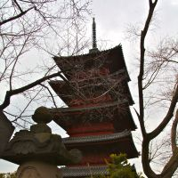 Hot spots: Honmonji Temple's carnelian-colored Gojyu-no-to (Five-storied Pagoda; above), and my genial hosts at the Roasting Cafe coffee shop.