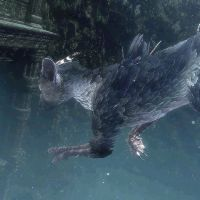 Lost cat: A screngrab from the eargerly awaited 'The Last Guardian,' which was once again missing from Tokyo Game Show. | ©SONY COMPUTER ENTERTAINMENT INC.