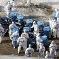 Eradicated: Workers in protective gear bury dead chickens at a poultry farm contaminated with bird flu in the town of Shintomi, Miyazaki Prefecture, on Monday. | KYODO PHOTO
