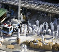 Taking precautions: Workers remove culled chickens from a poultry farm in Kinokawa, Wakayama Prefecture, on Wednesday after a bird flu outbreak was confirmed at the farm the previous day.   KYODO PHOTO