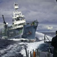 Clash looms: The Yushin Maru No. 3 whaling ship approaches the Gojira, a high-speed trimaran operated by the Sea Shepherd Conservation Society, in the Antarctic Ocean on Feb. 4. | AP PHOTO