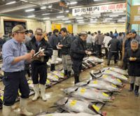 Tuna is traded at an early morning session at Tokyo's Tsukiji fish market in April. | SATOKO KAWASAKI PHOTO