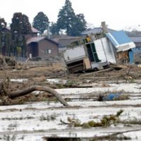 Growing pains: Wrecked houses and dead trees litter a destroyed rice paddy in Wakabayashi Ward, Sendai, on March 29. About 80 percent of eastern Sendai's farmland was damaged by the March 11 tsunami, including the first floor of farmer Kiichi Endo's house (below) in Sanbonzuka, Wakabayashi Ward. | SATOKO KAWASAKI PHOTO