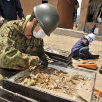 Self-Defense Forces personnel sort zoological samples recovered at the site. | YOSHIAKI MIURA