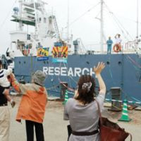 In the name of science: Whalers leave the port of Shimonoseki in Yamaguchi Prefecture on Saturday aboard the Yushin Maru.   KYODO PHOTO