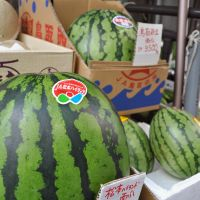 Nice, but ... : A watermelon with a price tag of ¥3,800 awaits a buyer at a shop in Chuo Ward, Tokyo, on July 22. | KYODO