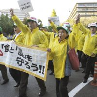 Ax to grind: People from Iwate Prefecture rally against the Trans-Pacific Partnership outside the Foreign Ministry on Oct. 26. | KYODO