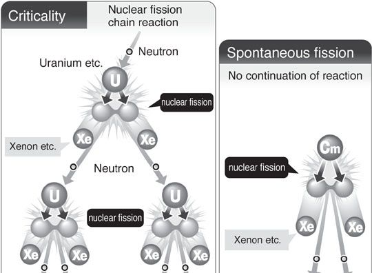No chain reaction in reactor 2, expert says