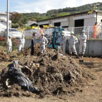 Scrub homes, denude trees to wash cesium fears away