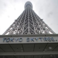 Take the elevator: The Tokyo Sky Tree, the world's tallest freestanding broadcast tower, was celebrated at a formal completion ceremony Friday. | KYODO