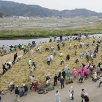 Adapting to nature: Otsuchi residents participate in an experiment to turn a pile of debris from the March 11 earthquake and tsunami into a new forest on Monday in Iwate Prefecture.   KYODO