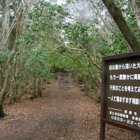 Make it a round trip: A police-posted sign stands at an entrance to the Aokigahara Jukai forest in the village of Narusawa, Yamanashi Prefecture, in April reads: 'Life is a precious gift from your parents. Please think of your parents, siblings and children. Please do not worry on your own. Talk to us.'   KYODO