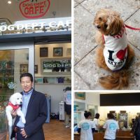Dog lovers, urban explorers find a welcome at foot of Skytree
