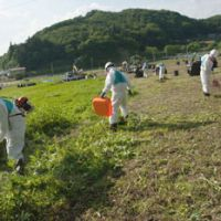 Scratching the surface: Workers in protective suits collect contaminated soil in Kawamata, Fukushima Prefecture, on Monday, nearly 15 months after the start of the nuclear crisis. | THE WASHINGTON POST