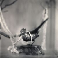 Enduring the unbearable: Hiroshi Watanabe's photographs document handcrafted works by Japanese-Americans in World War II U.S. internment camps, such as a flower brooch and a carved bird, as well as everyday items like this teapot found broken in the garbage dump at the Tule Lake camp in California. | HIROSHI WATANABE