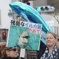 A whale of a time: Demonstrators march in Tokyo on Saturday against whale and dolphin hunts. | AFP-JIJI