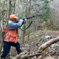 Fair game: A hunter stalks deer that have been harming crops in December 2011 in the city of Nagano. | KYODO