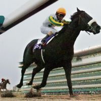 The day's best: Nihonpiro Ours gallops to a Japan Cup Dirt victory on Sunday at Hanshin Racecourse. | KYODO