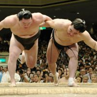 Brothers in arms: Harumafuji (right) and Hakuho compete on the final day of the Autumn Grand Sumo Tournament on Sunday. | KYODO
