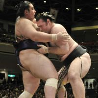 Too close for comfort: Kotooshu (right) stays in control against Kaisei in a Friday match at the New Year Grand Sumo Tournament.   KYODO