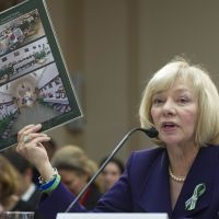 Louder than words: Newtown School Superintendent Janet Robinson on  Wednesday holds up pictures of cards and notes that Sandy Hook Elementary School in Connecticut received from around the world after December's mass shooting. She was speaking about gun violence at a meeting of the House Democratic Steering and Policy Committee in  Washington. | AFP-JIJI