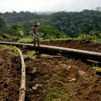 Can the discovery of oil save Ecuador's rainforest?