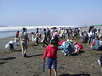 Cleanups are only drops in the ocean