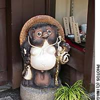 Japan's most commonly seen  tanuki