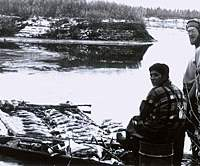 Caribou carcasses from our 1972 hunt along the Porcupine River in Yukon Territory, Canada, lashed to a log raft and ready to be towed back to Old Crow and skinned.